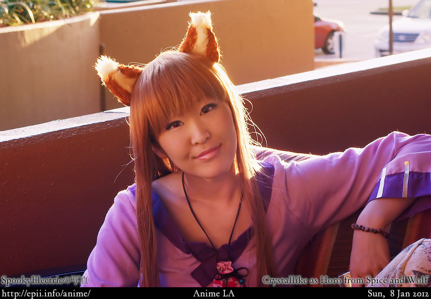 Cosplay  Picture: Spice and Wolf - Horo 0515