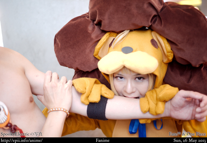 Cosplay  Picture: Fate/* & One Piece