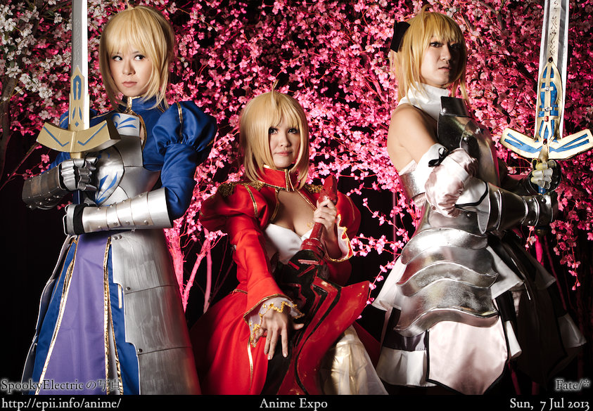 Cosplay  Picture: Fate - Saber Group 8692