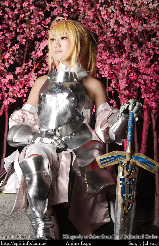 Cosplay  Picture: Fate Unlimited Codes - Saber 8703