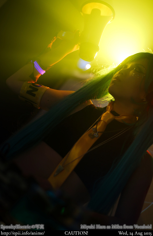 Cosplay  Picture: Vocaloid - Miku 9776