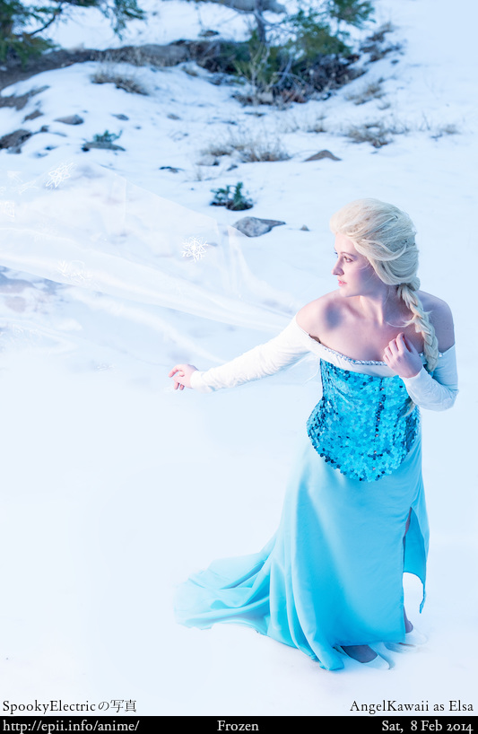 Cosplay  Picture: Frozen - Elsa 7290