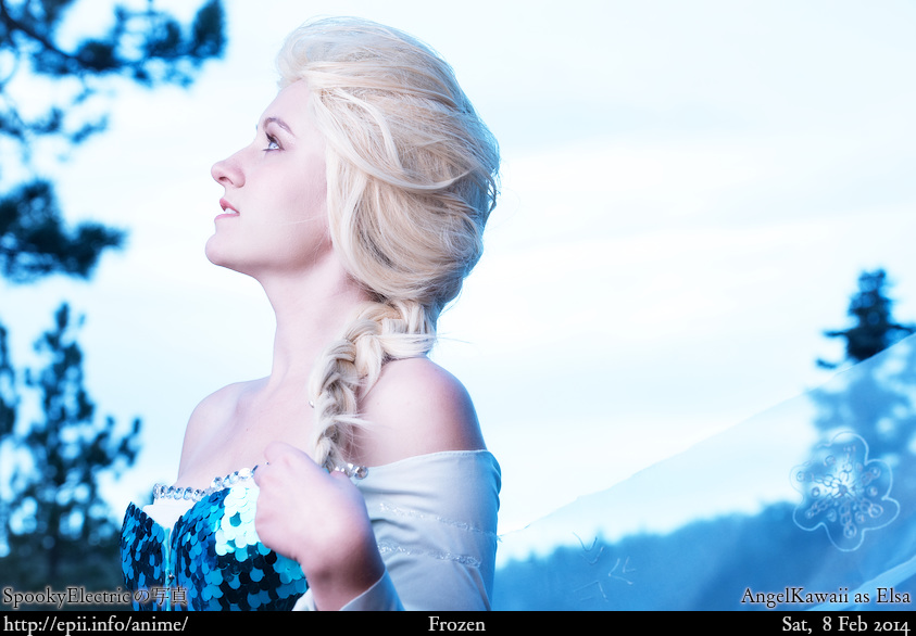Cosplay  Picture: Frozen - Elsa 7339