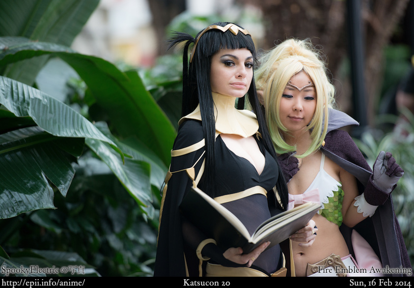 Picture: Fire Emblem Awakening - Tharja and Nowi 8193
