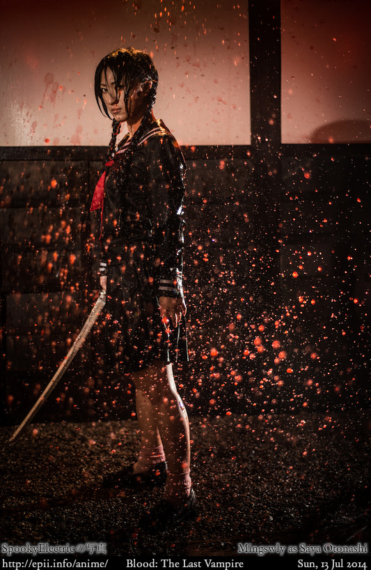 Cosplay  Picture: Blood - Saya 5688